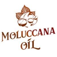 moluccana-logo-client-sws-digital-agency